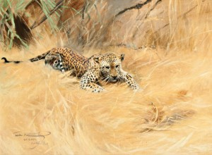 Wilhelm Kuhnert, Leopard, oil, 19 x 26, Jackson Hole Art Auction.