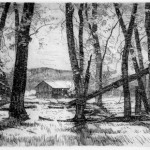 Jay Moore, Yampa Cottonwoods, copperplate etching, 5 x 7.
