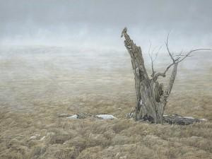 Colin Starkevich, Grassland Harmonies, oil, 30 x 40.