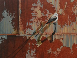 Robert Louis Caldwell, Shadow (scissor-tailed flycatcher), oil, 18 x 24.