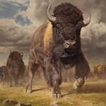 Dustin Van Wechel, Headstrong, oil, 48 x 40.
