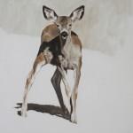 September Vhay, Deer Run Dance, oil, 7 x 7.