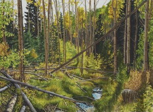 Jonathan Keeton, North Fork Tesuque Creek, watercolor, 22 x 30.