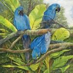 Robert Dorman, Blue Hyacinths, oil, 16 x 20.