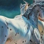 Susan Sheets, Appaloosas, oil, 24 x 36.