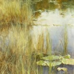 Lily pads, oil.