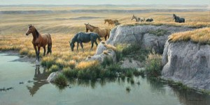 Mustang Country, oil, 20 x 48.