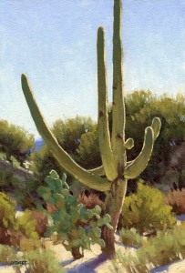 The Noble Saguaro, oil, 12 x 8.