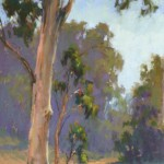 Dance of the Eucalyptus, pastel, 16 x 8.