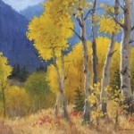 Wyoming Range Aspens by Ruth Rawhouser