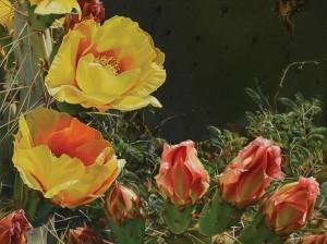 Lee Alban, Desert Blooms, oil, 18 x 24.