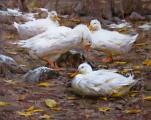 Mitch Baird, Duck Duck Duck Goose, oil, 24 x 30.