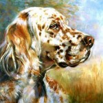 Beth Carlson, English Setter Profile, oil, 8 x 10.