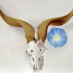 Georgia OKeeffe, Rams Head, Blue Morning Glory, oil, 20 x 30.