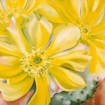 Georgia OKeeffe, Yellow Cactus, oil, 30 x 36.