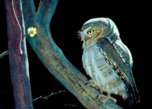Timothy David Mayhew, Night Wise, oil, 12 x 16.