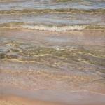 Debra Reid Jenkins, Warm Water West Wind, oil, 40 x 24.