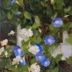Kathy Anderson | Glorious Morning Glories, oil, 30 x 20.