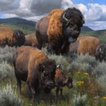 Kyle Sims | A Yellowstone Migration, oil, 55 x 40.