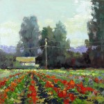 Brenda Boylan, Dahlia Repose, oil, 12 x 20.