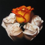 Confetti Rose, pastel, 16 x 16.