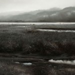 Renato Muccillo | Diffused Periphery, oil, 24 x 54. Courtesy White Rock Gallery.
