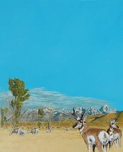 Mark Eberhard, Pronghorn Antelope, oil, 36 x 30.