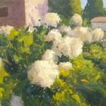 Michael Clark, Grandpa's Hydrangeas, oil, 18 x 24.