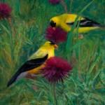 Carol Guzman, Thistles & Goldfinches, oil, 12 x 10.