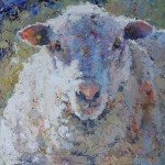 Julee Hutchison, Wooly Boy, oil, 24 x 24.