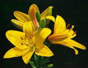 Lilies, oil, 11 x 14.