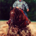 Linda Massey, World Champion Reining Horse Texas Kicker, oil 84 x 60.