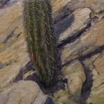 Richard Prather, Taking Hold, oil, 12 x 8.