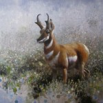 Ewoud de Groot, Pronghorn II, oil, 43 x 43.
