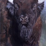 Jill Soukup, Bison At 'Cha, oil, 76 x 42.