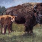 Jill Soukup, Cow & Calf, oil, 16 x 20.
