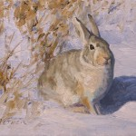 William Alther, Winter Cottontail , oil, 8 x 10.