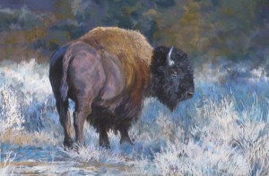 Mary Ann Cherry, Winter Bison, pastel, 20 x 30.