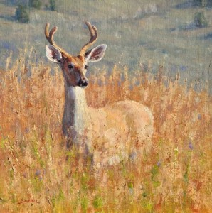 Greg Scheibel, Young Buck, oil, 16 x 16.