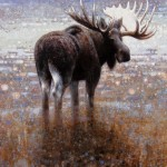 Ewoud de Groot, Wading Moose #4, oil, 51 x 43.