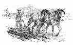 Andy Thomas, Plowing, pen/ink, 7 x 10.